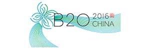 B20 China